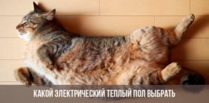 Кот на теплом полу